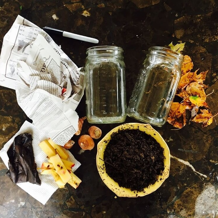 composting-for-kids-fall-composting-ingredients.jpg
