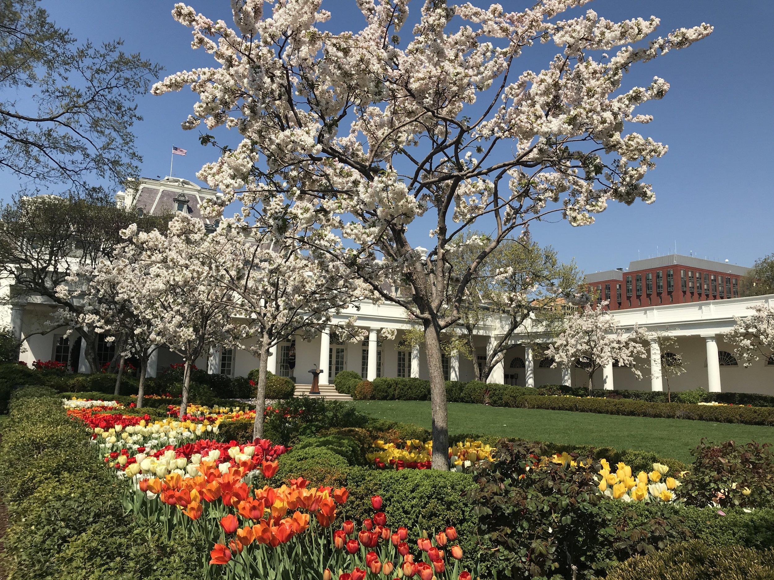 White House Garden Tour