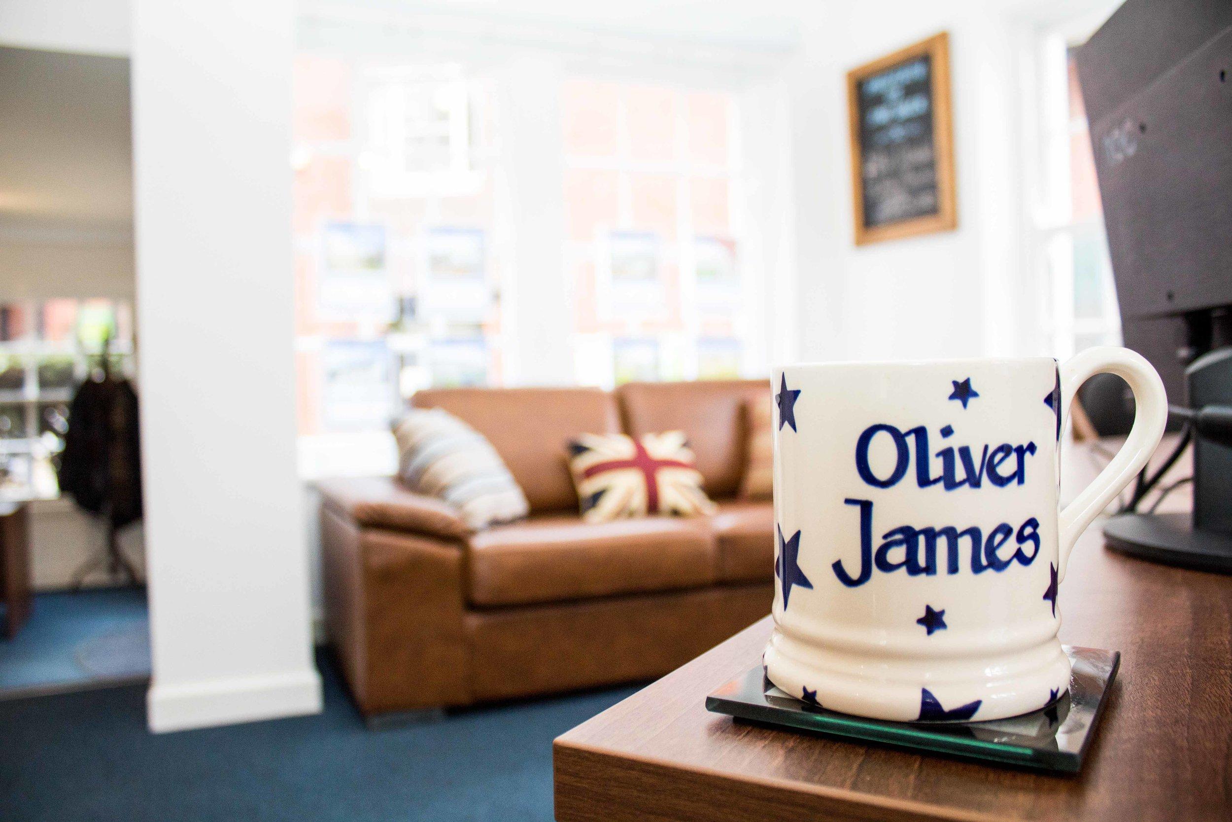 Oliver James - 39 - Colour - Lo Res.jpg