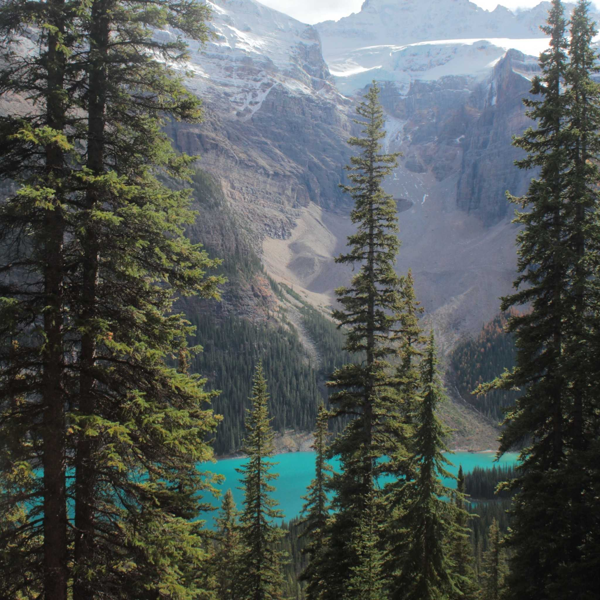 Larch-Valley-Trail-Viewpoint-e1446430983756.jpg