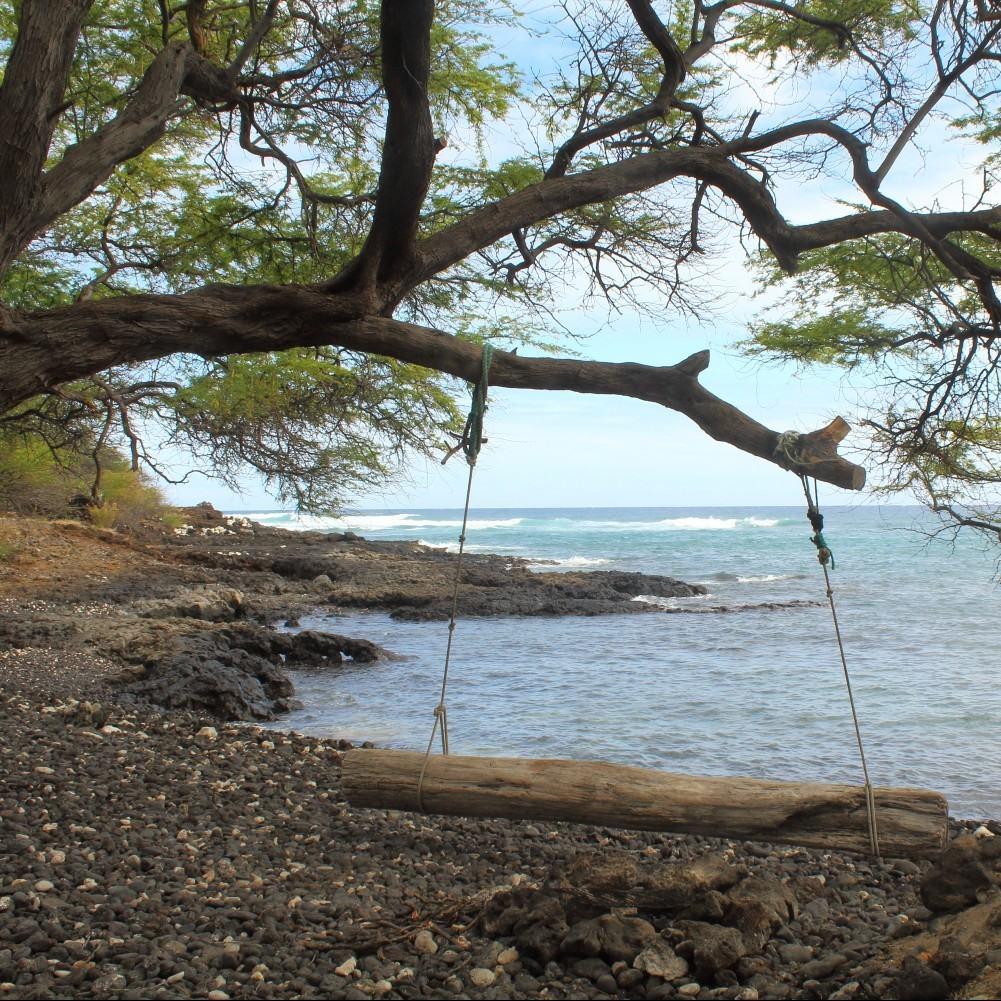 Tree-swing-at-Kanaio-Beach-e1448509227564.jpg