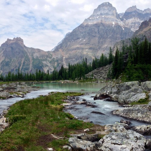 Stream crossing, Lake O'Hara Valley