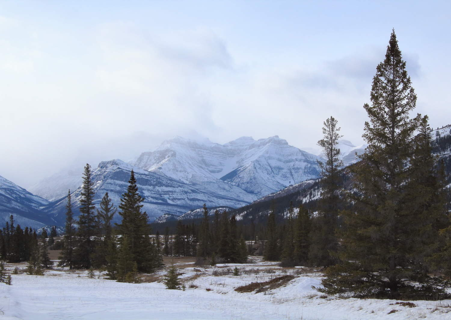 The view from our hike to Siffleur Falls