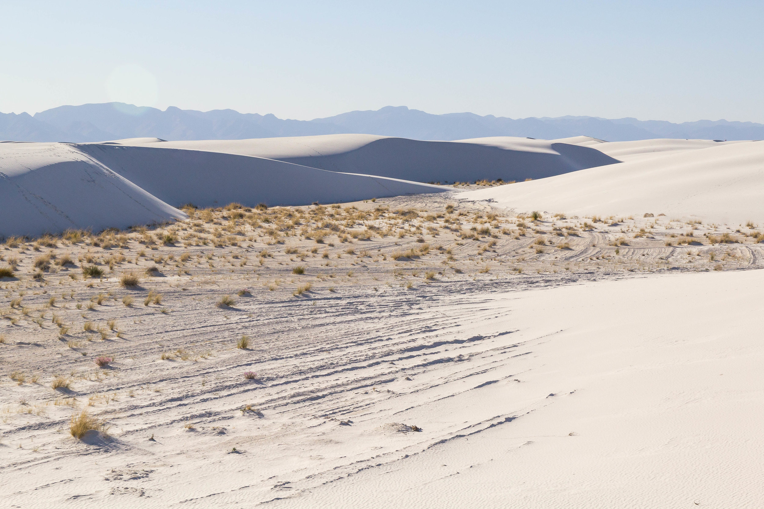 White Sands NM_edited_blog-8.jpg