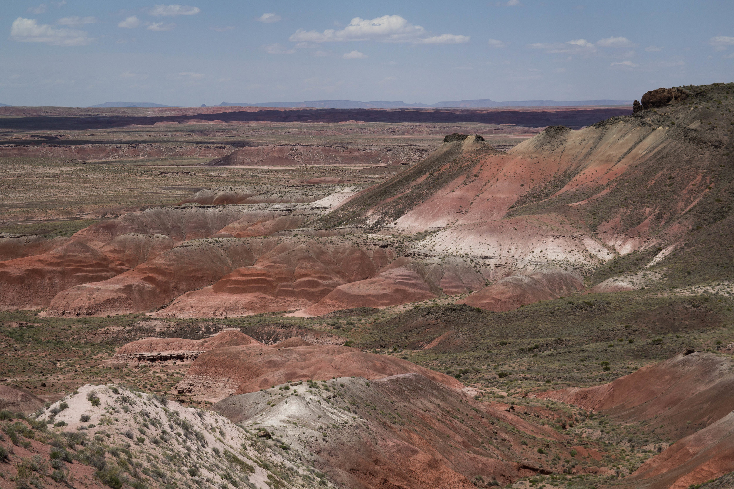 Overlooking the Painted Desert (north section of the park)