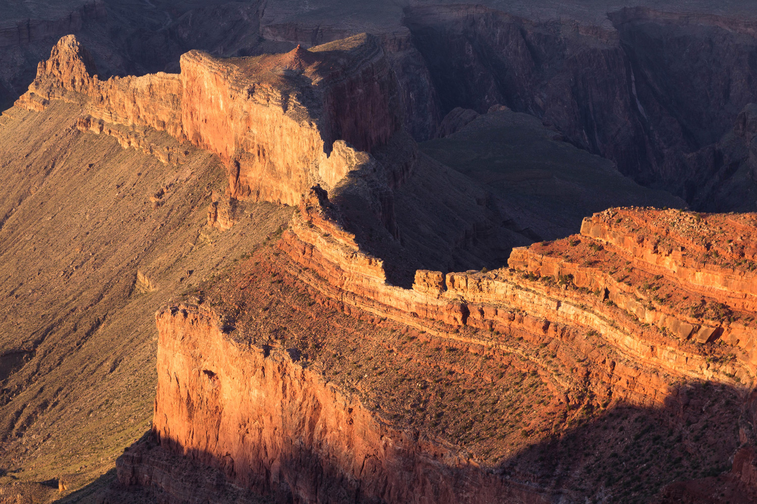 Golden Light, South Rim