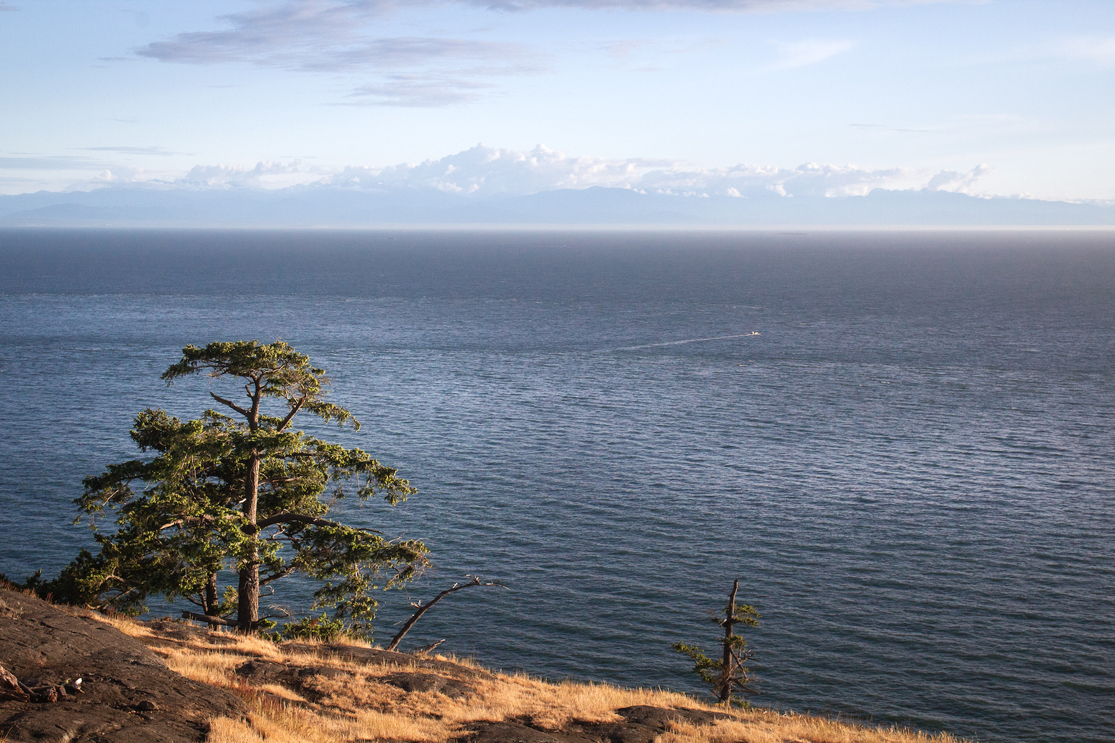 View from Sares Head looking southwest to the Olympic Peninsula