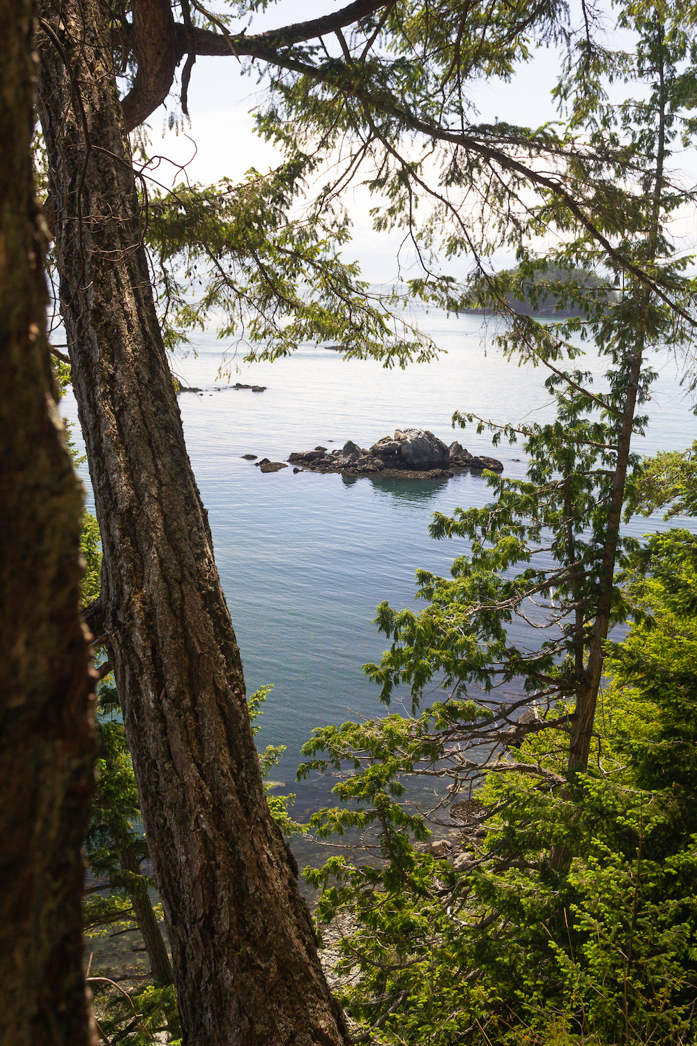 Views from Deception Pass hiking trails.jpg