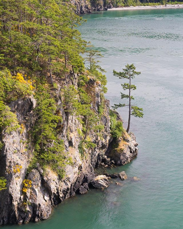 We had a blast a couple weeks back exploring Deception Pass on the Washington Coast! 🌲🌊 It's been a while since we drummed up a blog post but we miss putting them together to share with everyone 💙 So please check it out 👉 Our Top Recommendations for Visiting Deception Pass State Park 🌁 - link in bio!