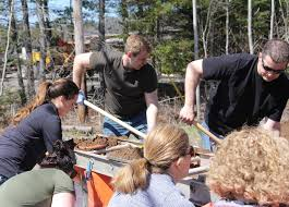 Premier Gallant pitches in. Photo: Telegraph Journal