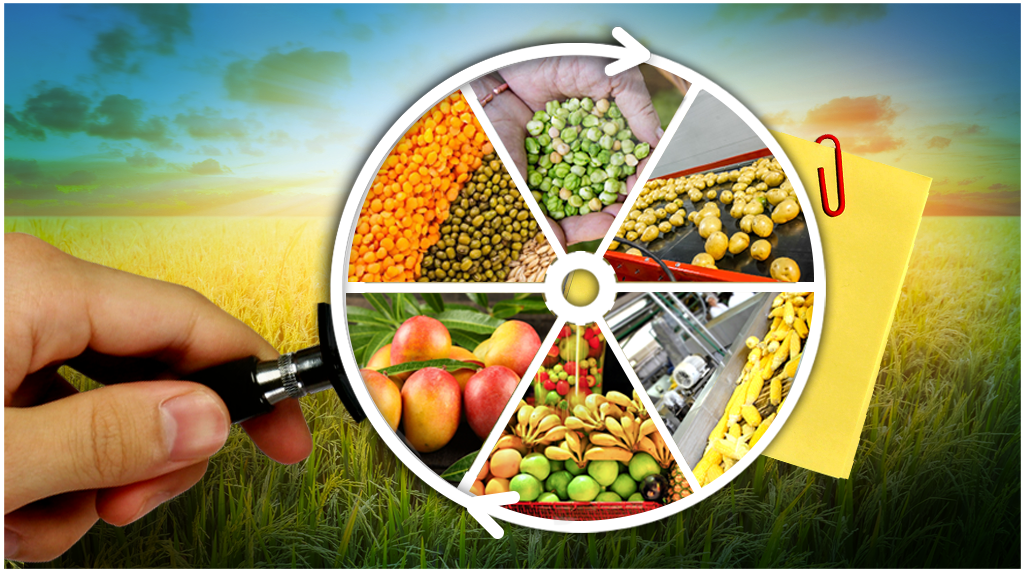Food Processing -