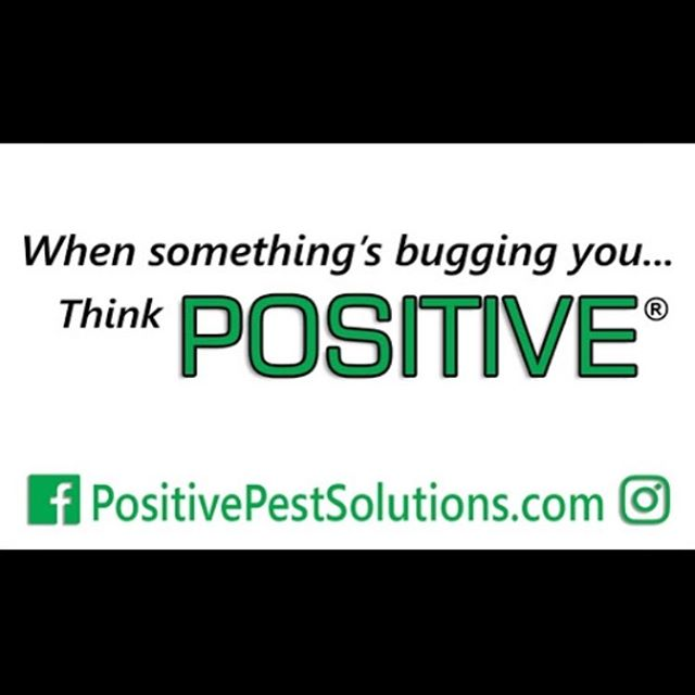 When something's bugging you... Think POSITIVE #Positive