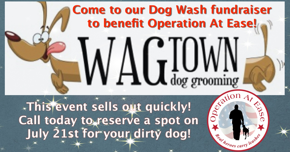 WagTown Wash 2019-Event.jpg