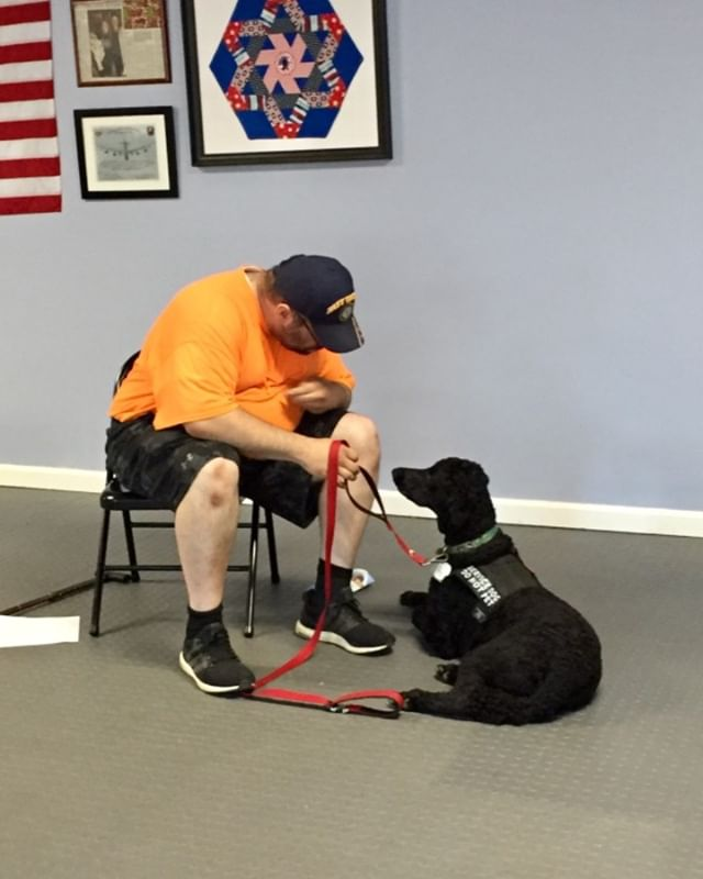 Stolen moments in dog training  #ptsd #ptsdawareness #518 #518dogs #poodle #servicedog #navy #support #supportveterans #stolenmoments #bromance