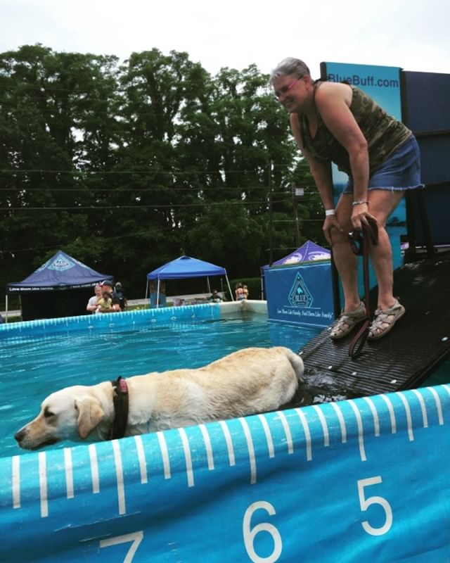 First dog in the pool SD Sniper with Army veteran Donna! OAE builds confidence, friendships and pushes you to put yourself out there and take a chance!  #oaeproud #gosniper #servicedog #servicedogsofinstagram #dockdogs #proud #ptsd #ptsdrecovery #friends #community