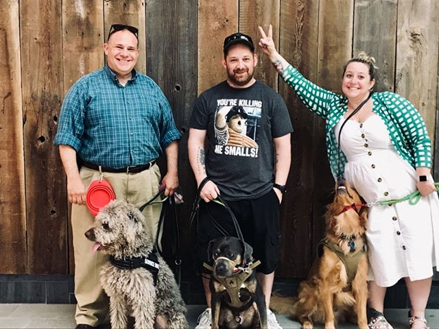 I love this class, I love this picture and I love that they all passed their public access test! So much work went into this, I'm so proud! #ptsd #ptsdawareness #tbi #servicedog #servicedogsofinstagram #shelterdog #teamawesome #armyveteran #navyveteran #518 #518dogs #hellyeah