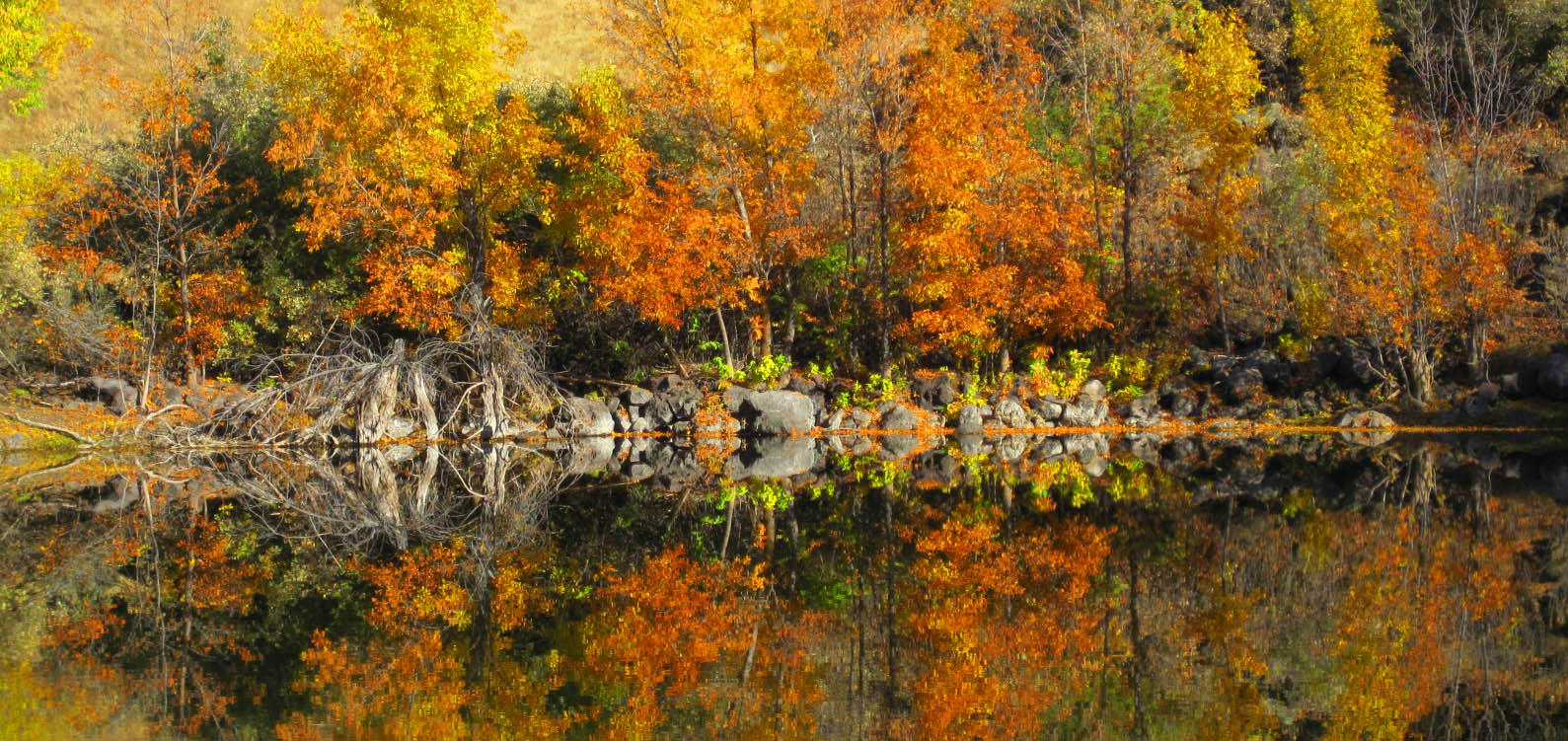 Fall at the Frog Ponds.JPG