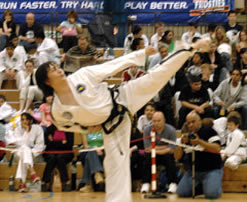 Alan-Liu-V-Side-Kick.jpg