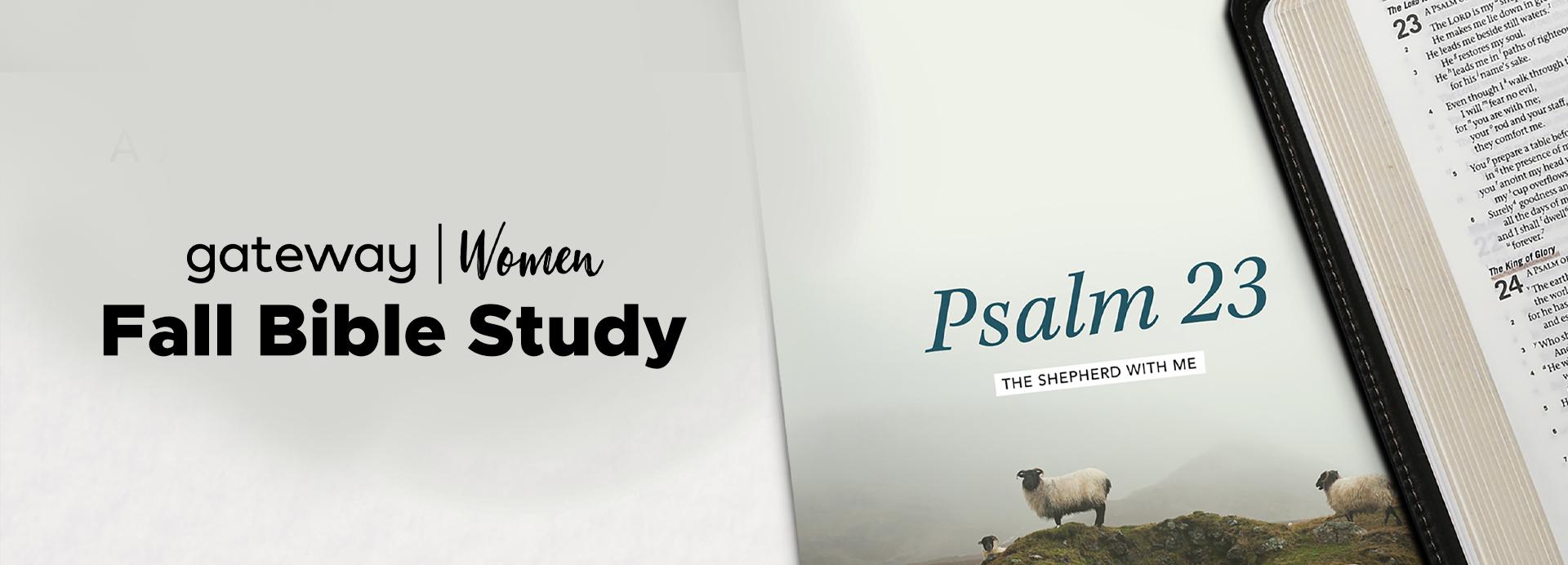 bible study_banner.jpg