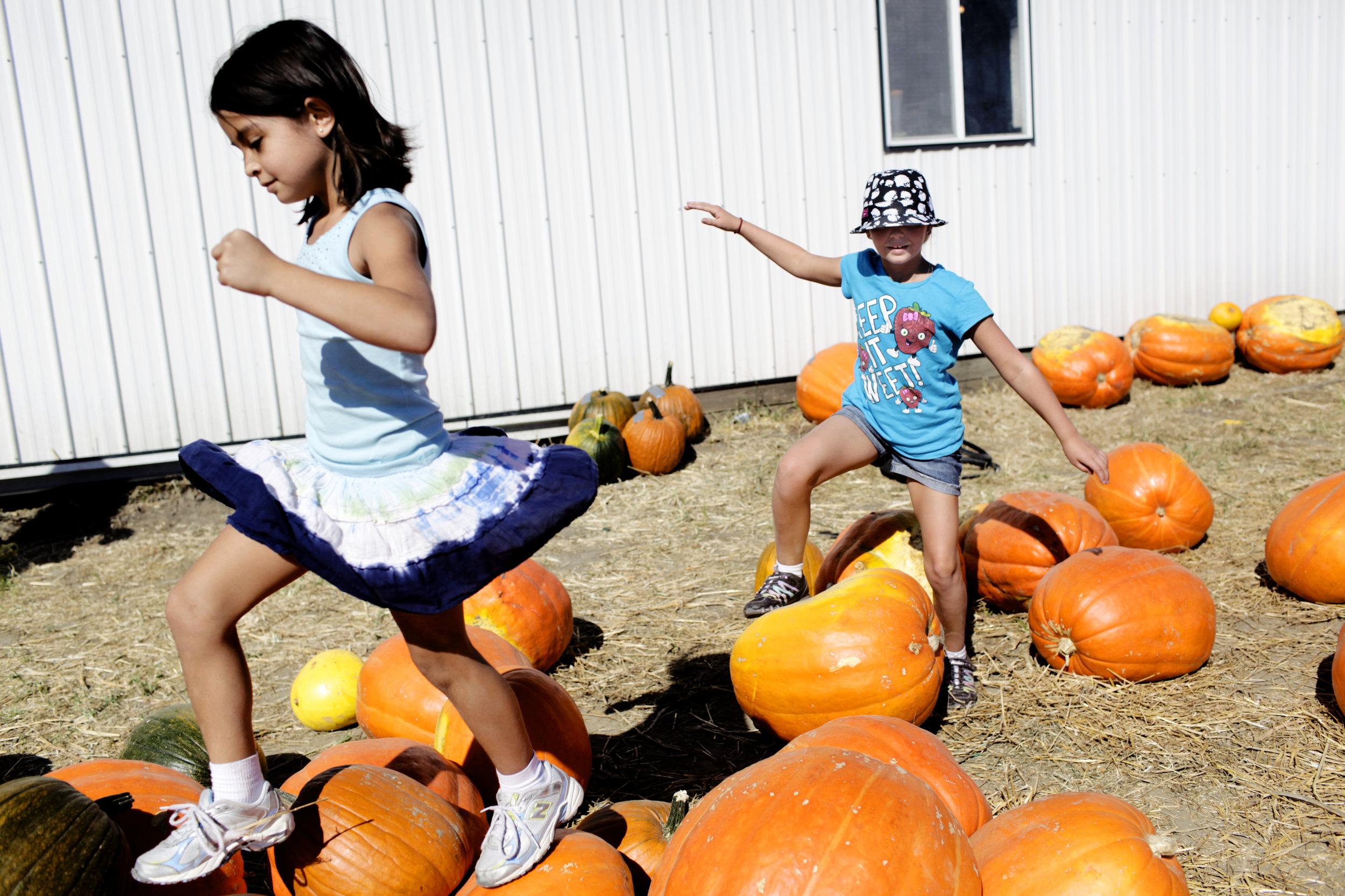 0009_100811 018a pumpkin festival ak.jpg