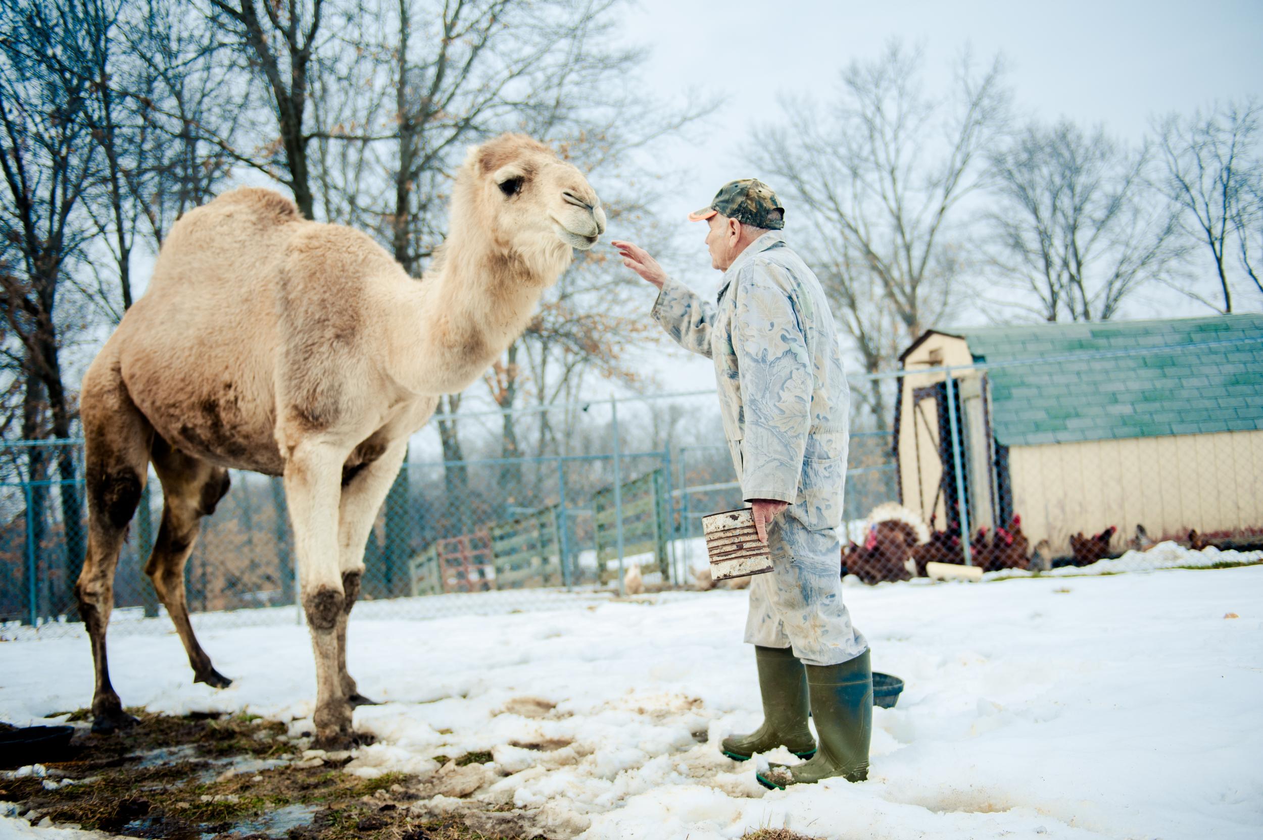 0019_030813 021 joe camel ak.jpg