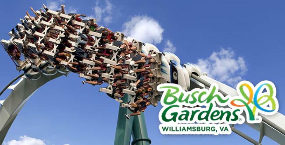 Busch Gardens williamsburg, va theme park roller coaster