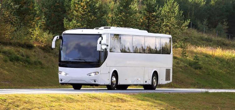 mini-bus-rental.jpg
