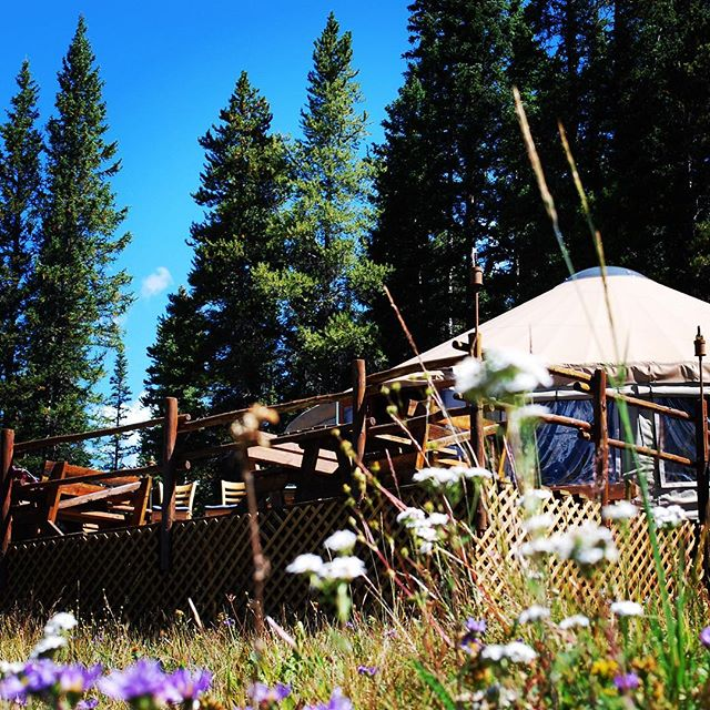 This restaurant at 10,800 feet... and a mile into the backcountry...and in a yurt.  Cheers to an off the grid adventure! #tennesseepasscookhouse #pronetowander #yurtlife #travelmemoir #coloradolife #datenight #backcountry #backcountryskiing #adventuretogether #bestview #hikeandeat #crosscountryski #wanderlust #exploreeverything #thisis40something #myastheniagravisstrong #offthegrid #restaurant