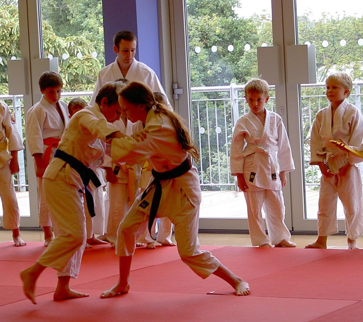 Judo-Classes-at-Elmbridge-Xcel-Walton-on-Thames-a copy.jpg