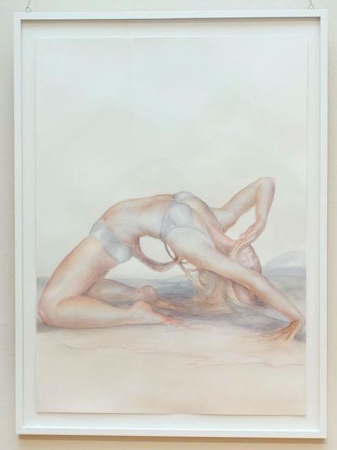 Lynn Colingham