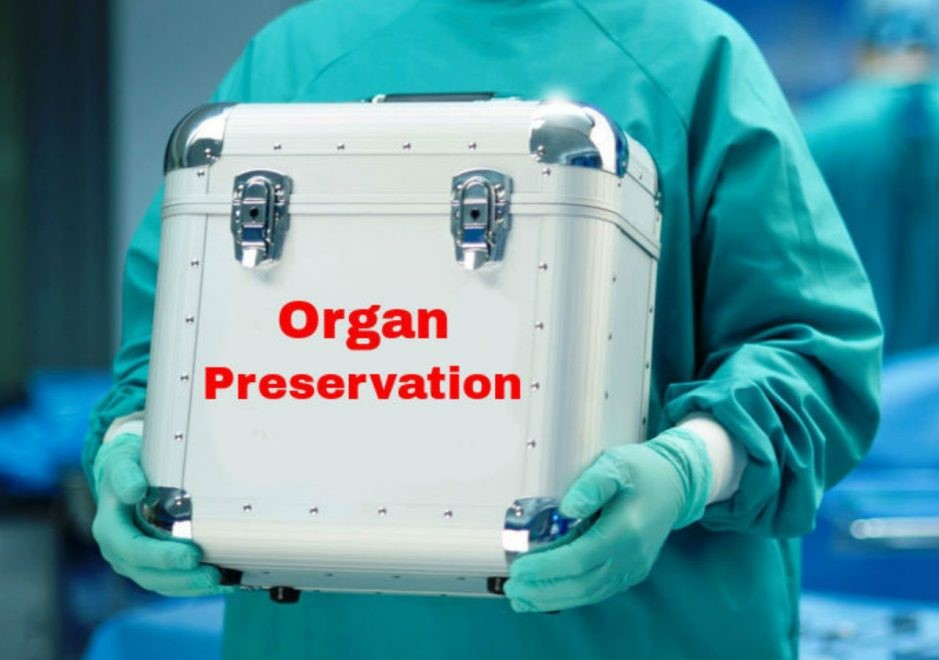 Organ-Preservation-market.jpg