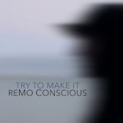 try to make it - remo conscious