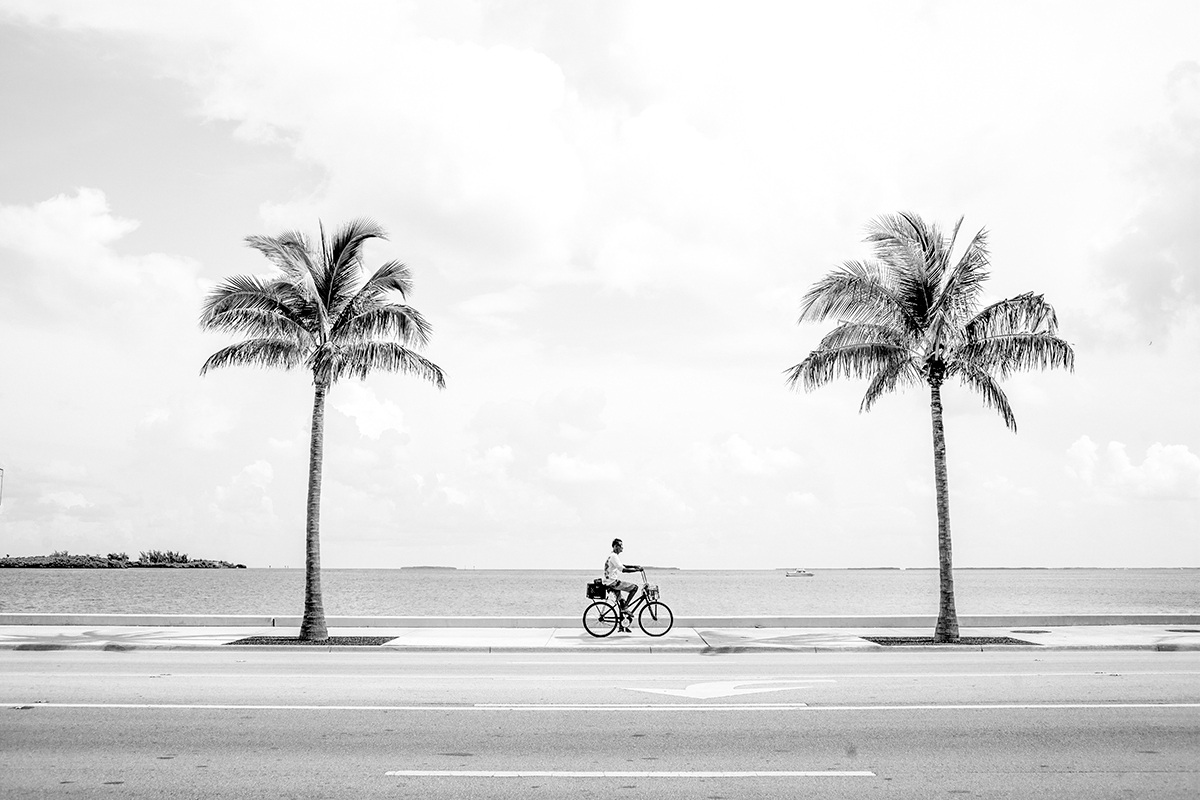 Palm Trees and Bicycle, Key West, Florida, FL, United States by Leica Photographer Manuel Guerzoni