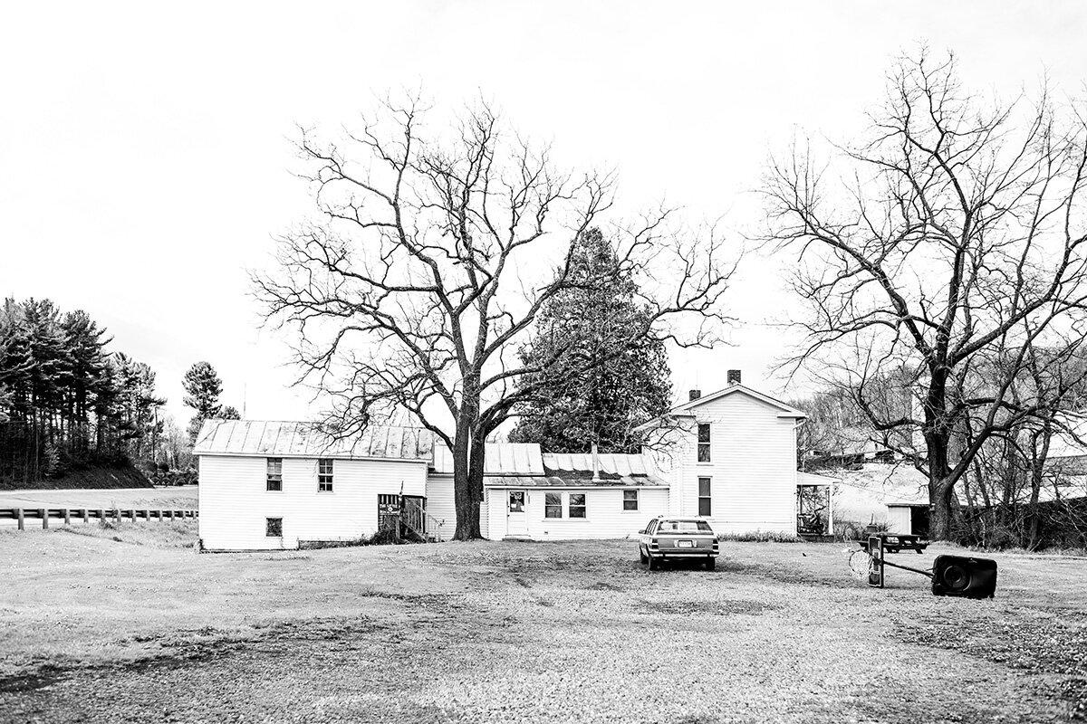 White house black trees, Penn Laird, Virginia, VA, USA, United States by Leica Photographer Manuel Guerzoni