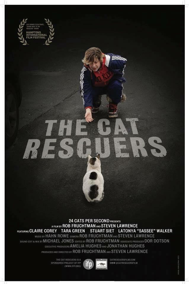 Cat Poster1.jpg