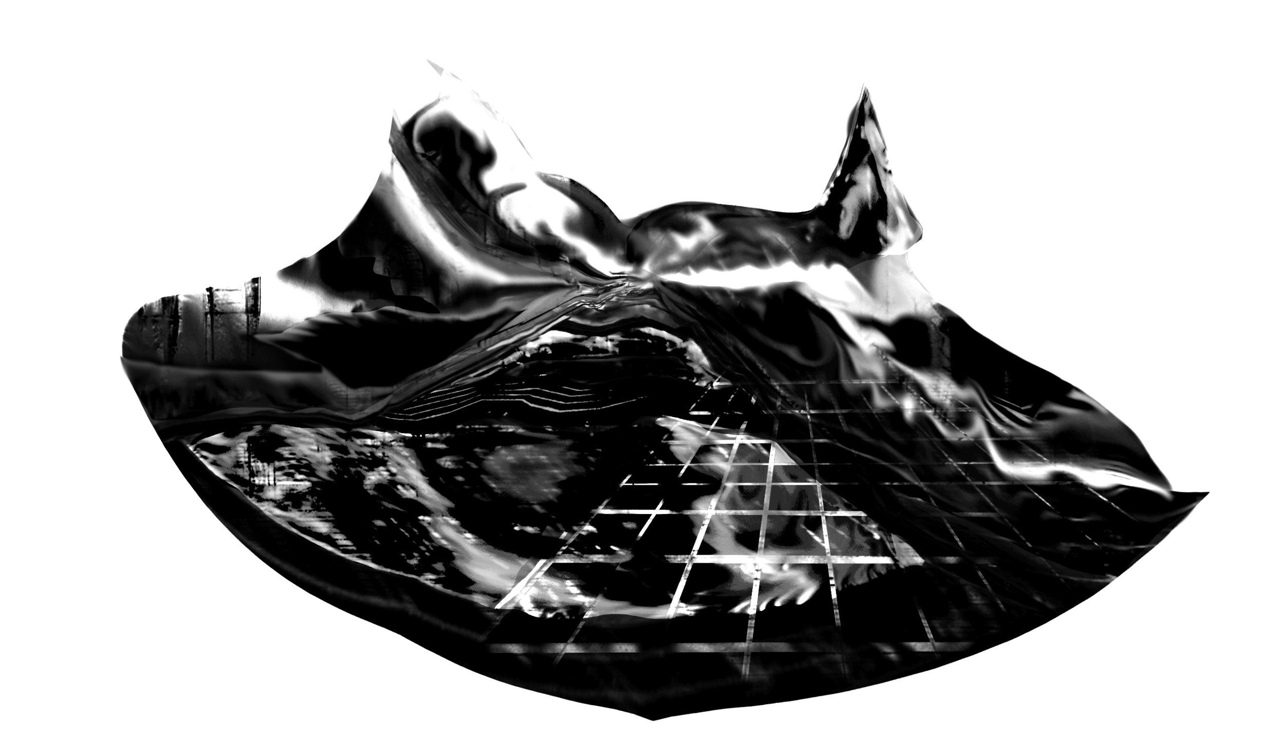 perspective warp bwfinal.jpg