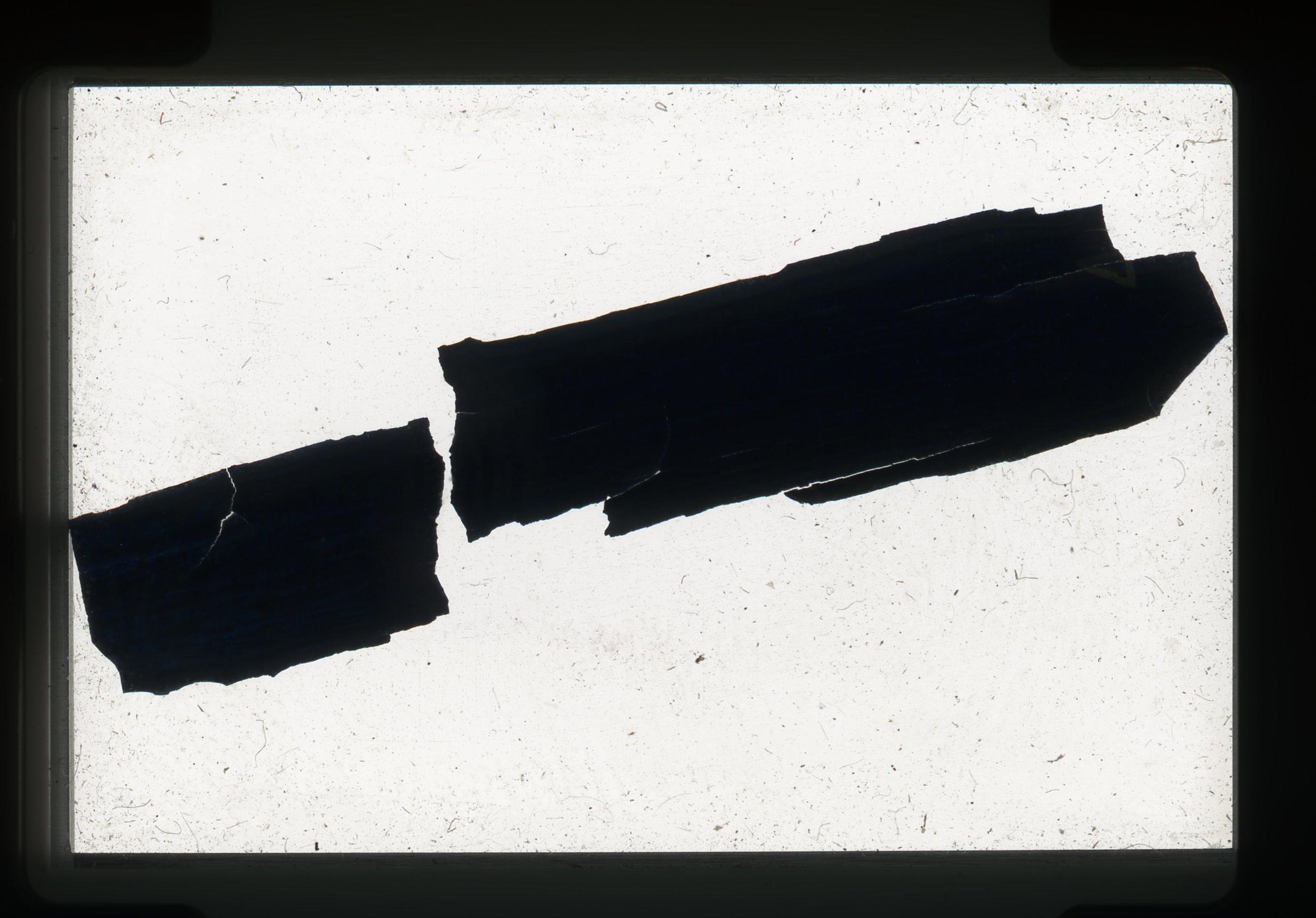 norway.06.pf.pencilbark.jpg