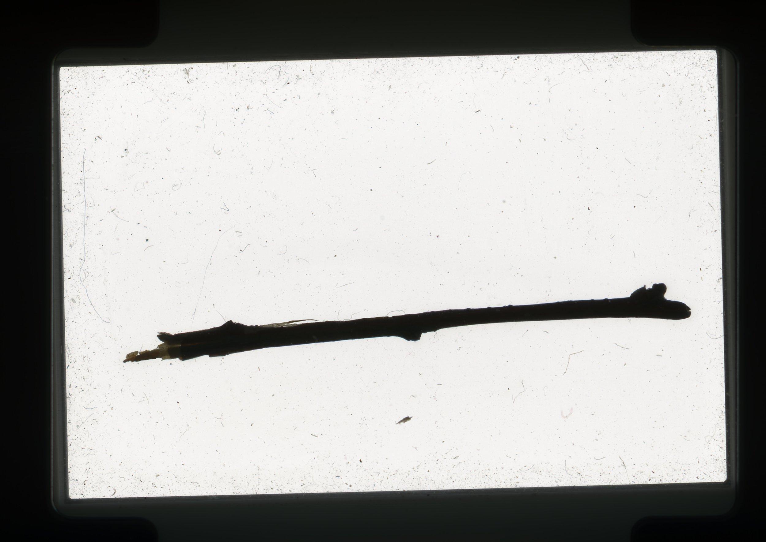 norway.20.pf.stick.jpg