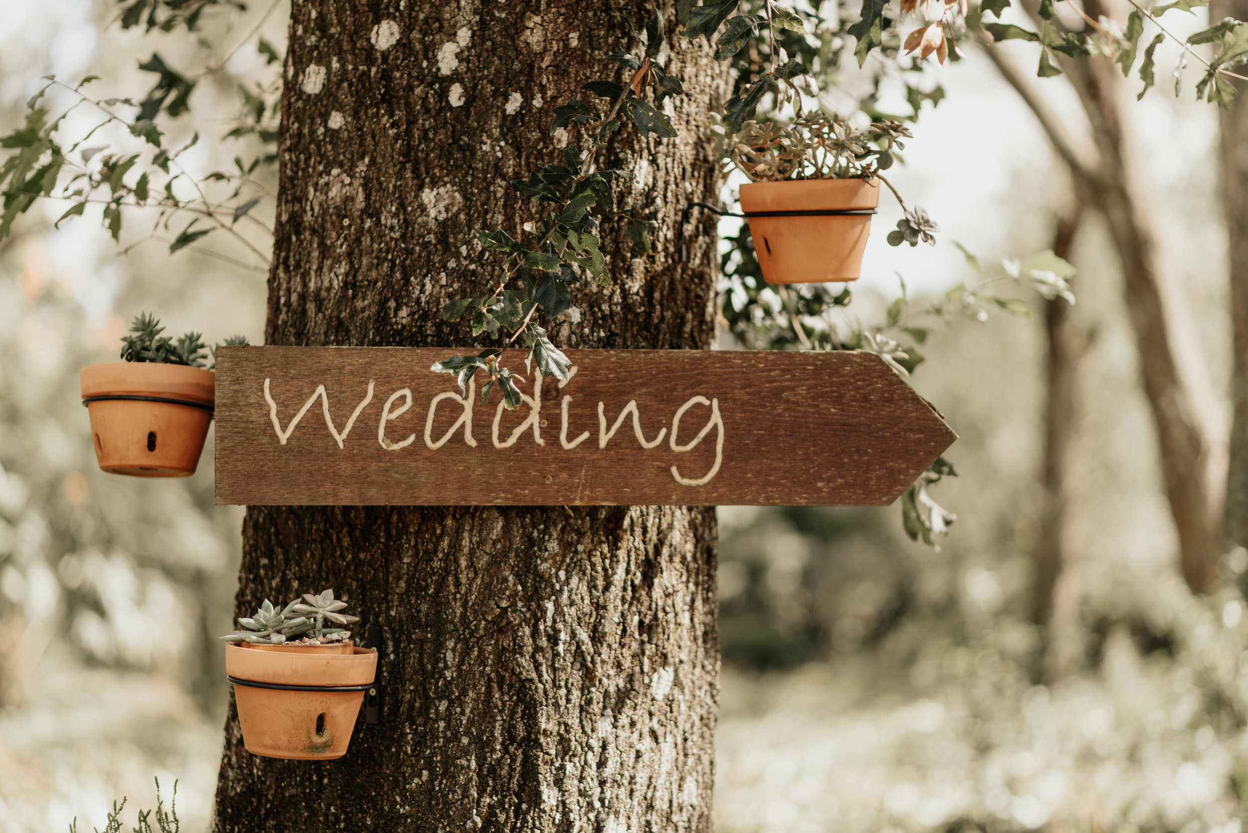 Kirstie-AJ-Wedding-9398.jpg