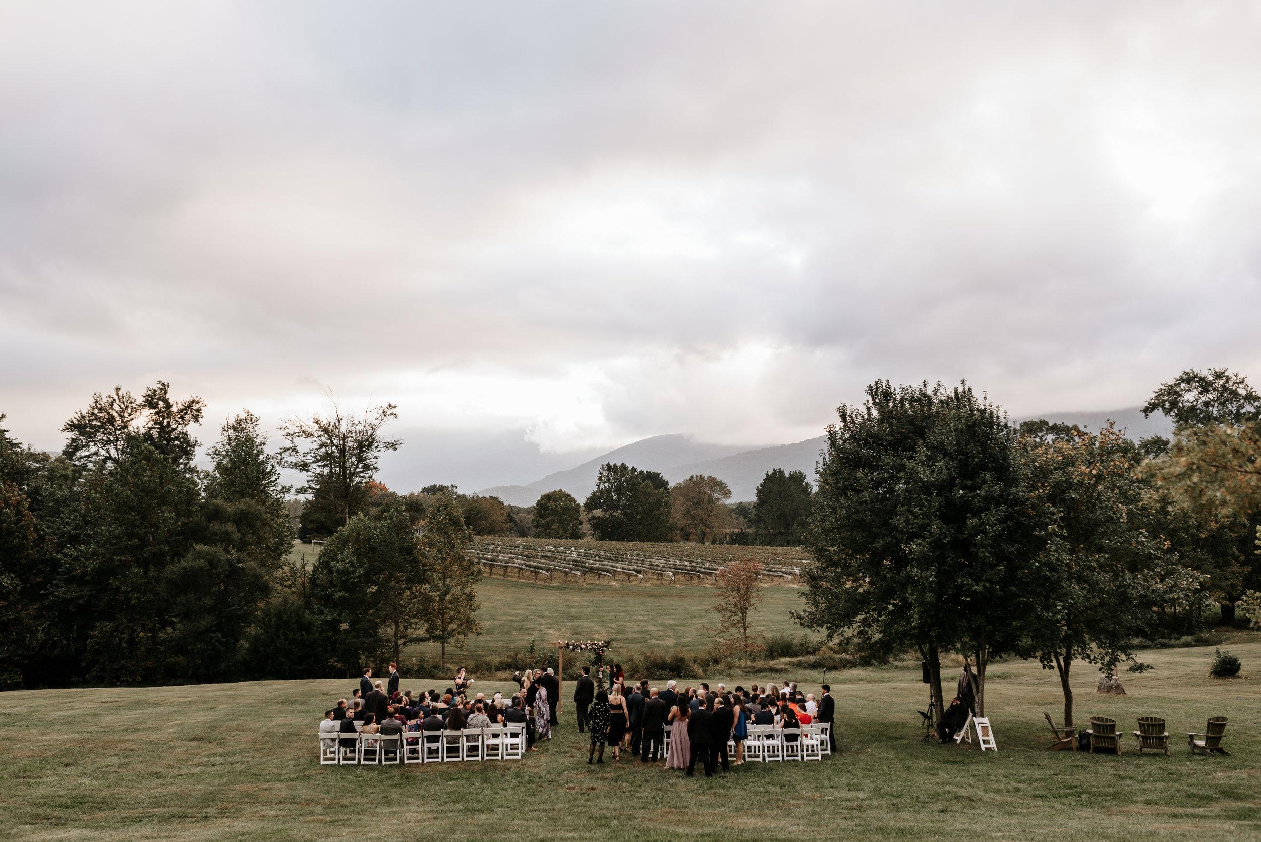 Veritas-Vineyards-and-Winery-Wedding-Photography-Afton-Virginia-Yasmin-Seth-Photography-by-V-9605.jpg