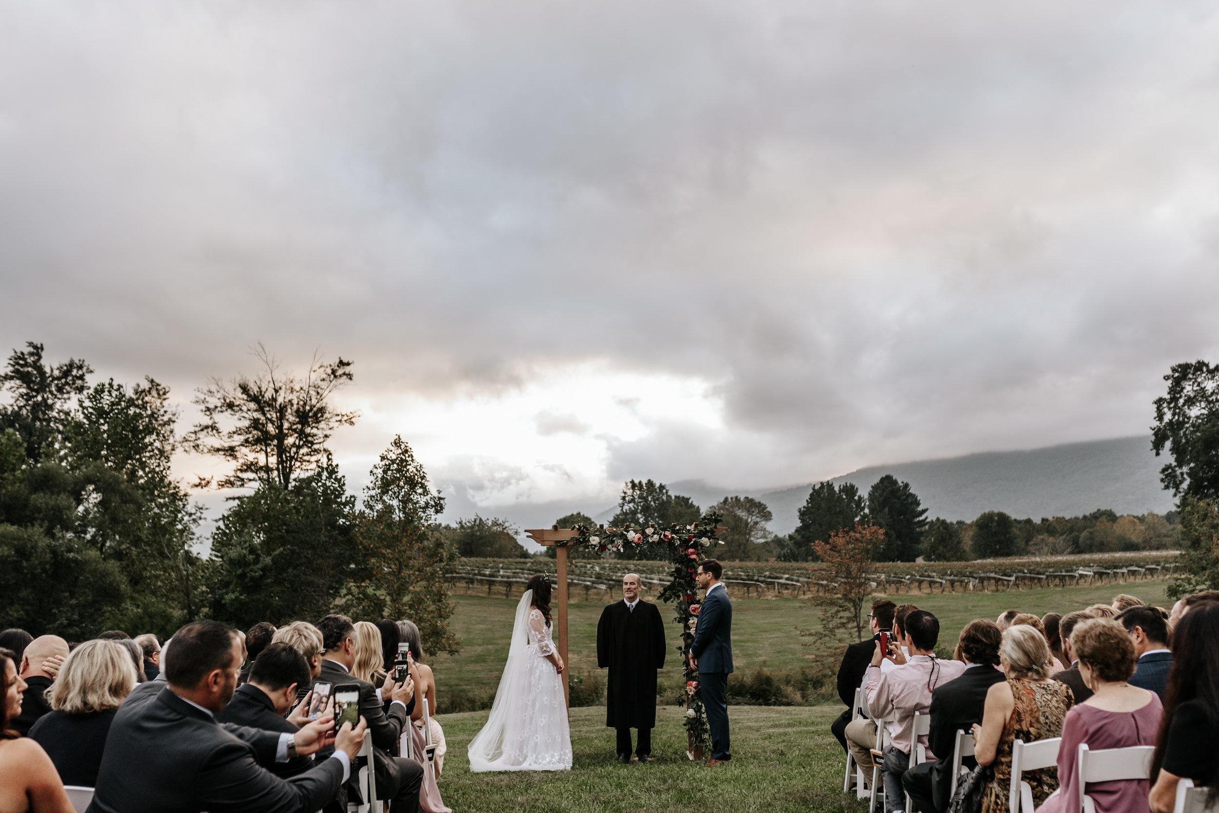 Veritas-Vineyards-and-Winery-Wedding-Photography-Afton-Virginia-Yasmin-Seth-Photography-by-V-9630.jpg
