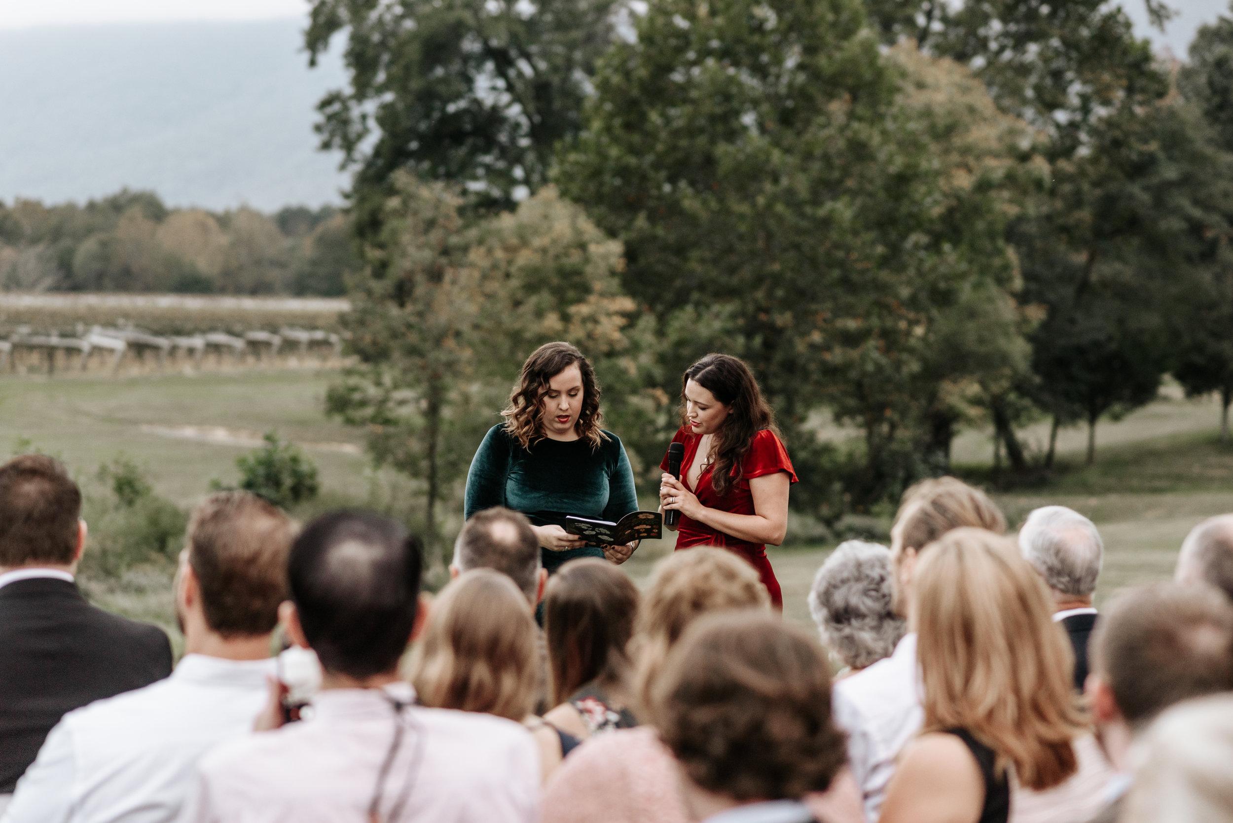 Veritas-Vineyards-and-Winery-Wedding-Photography-Afton-Virginia-Yasmin-Seth-Photography-by-V-2828.jpg