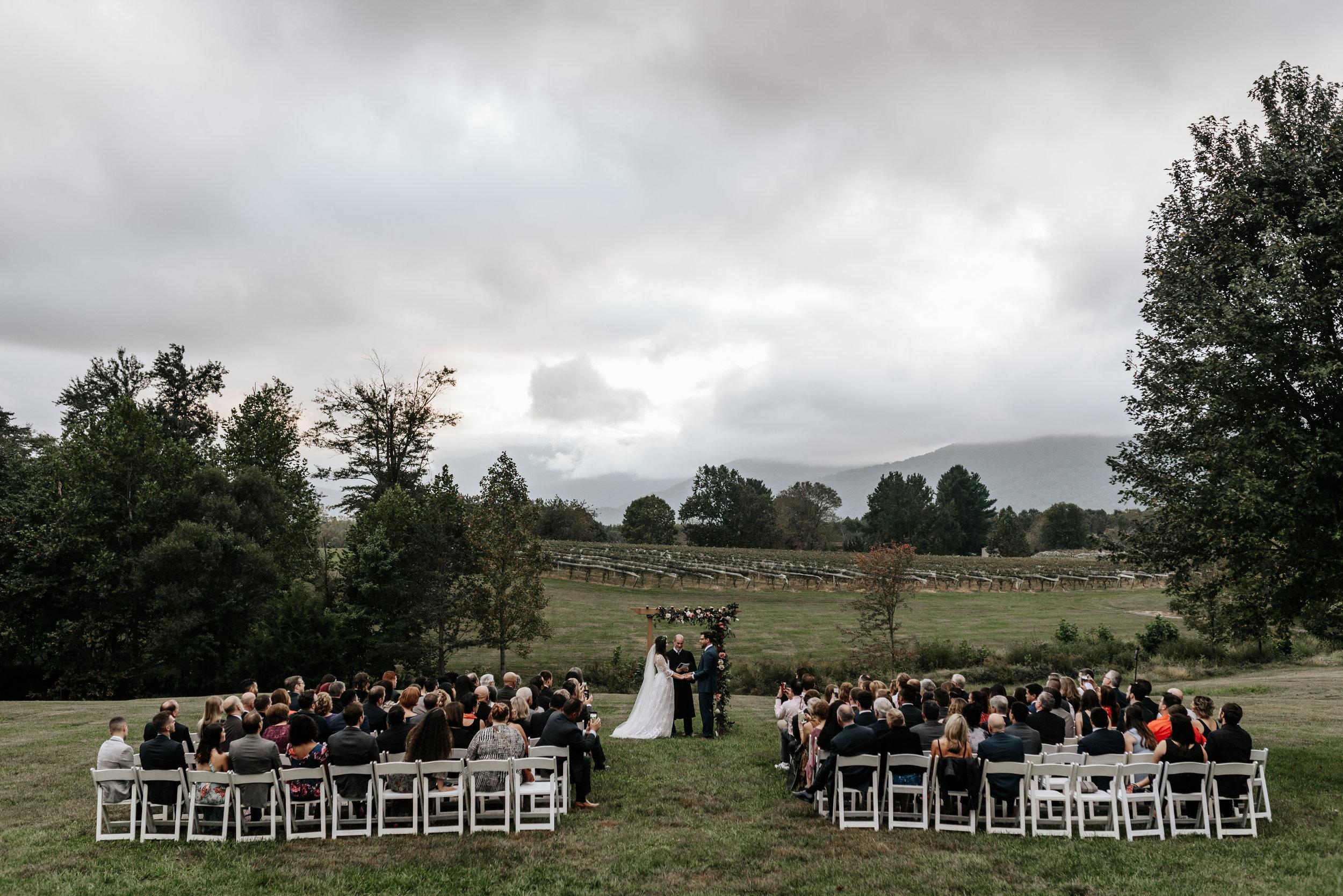 Veritas-Vineyards-and-Winery-Wedding-Photography-Afton-Virginia-Yasmin-Seth-Photography-by-V-9647.jpg