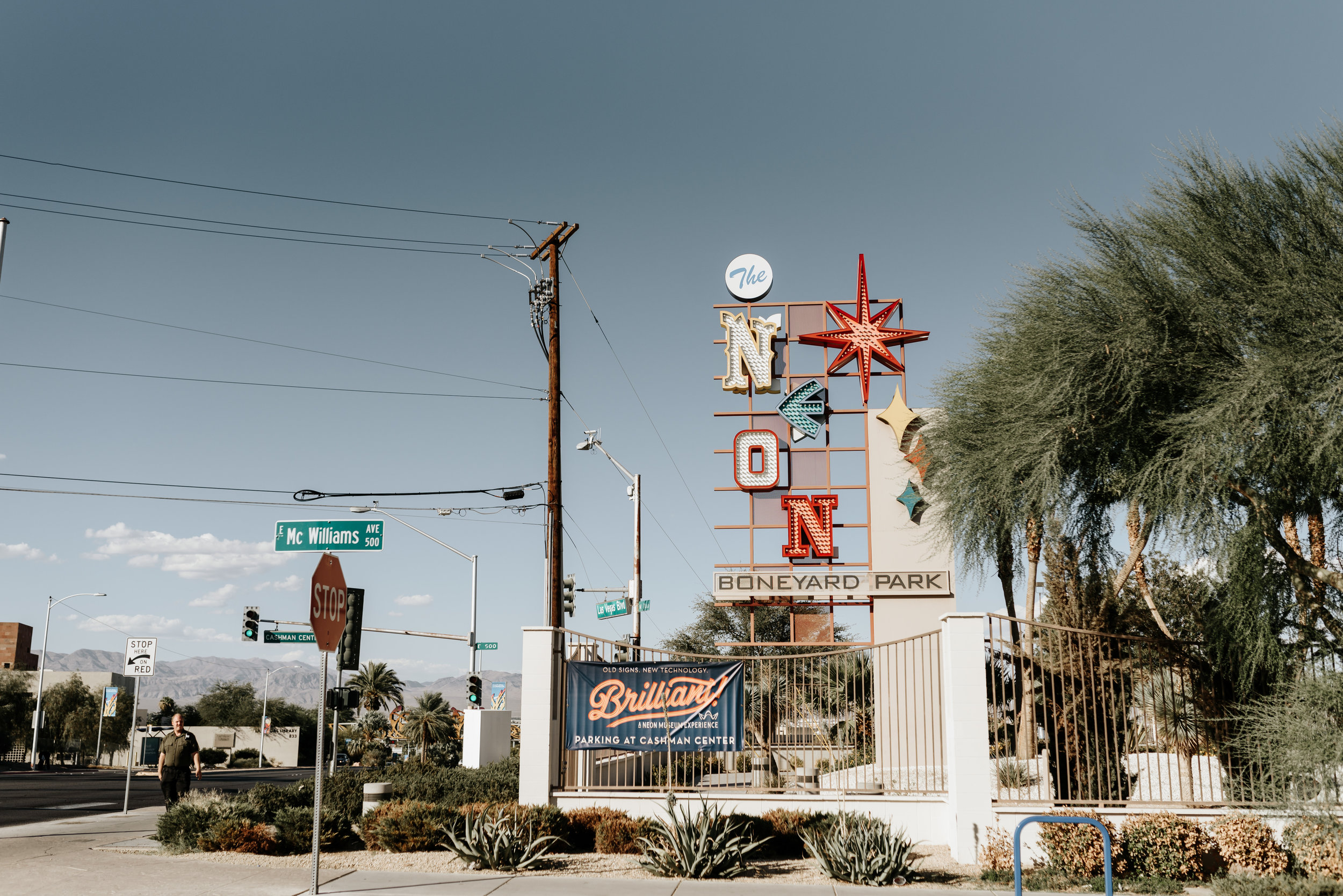 Neon-Museum-Wedding-Las-Vegas-Nevada-Golden-Nugget-Photography-by-V-Ally-and-Dan-2750.jpg