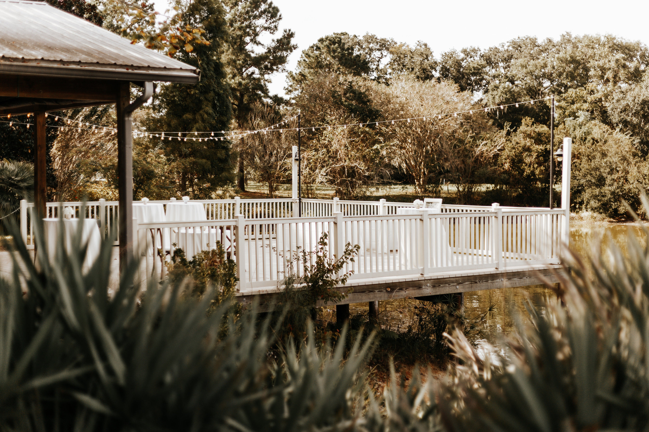 Kourtney_Sean_Savannah_Georgia_Wedding_Wormsloe_Histroic_Site_Coastal_Georgia_Botanical_Gardens_Photography_by_V_3372.jpg