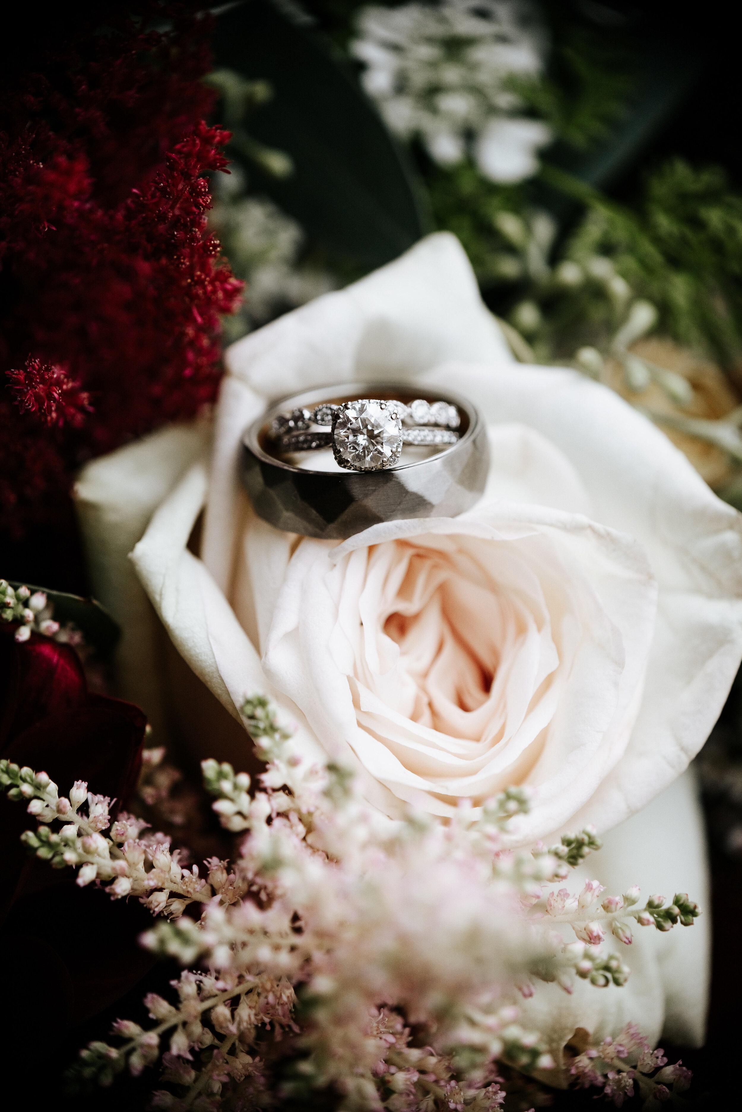 Allison_Nolan_Moss_Vineyards_Wedding_Charlottesville_Virginia_Photography_by_V_5.jpg