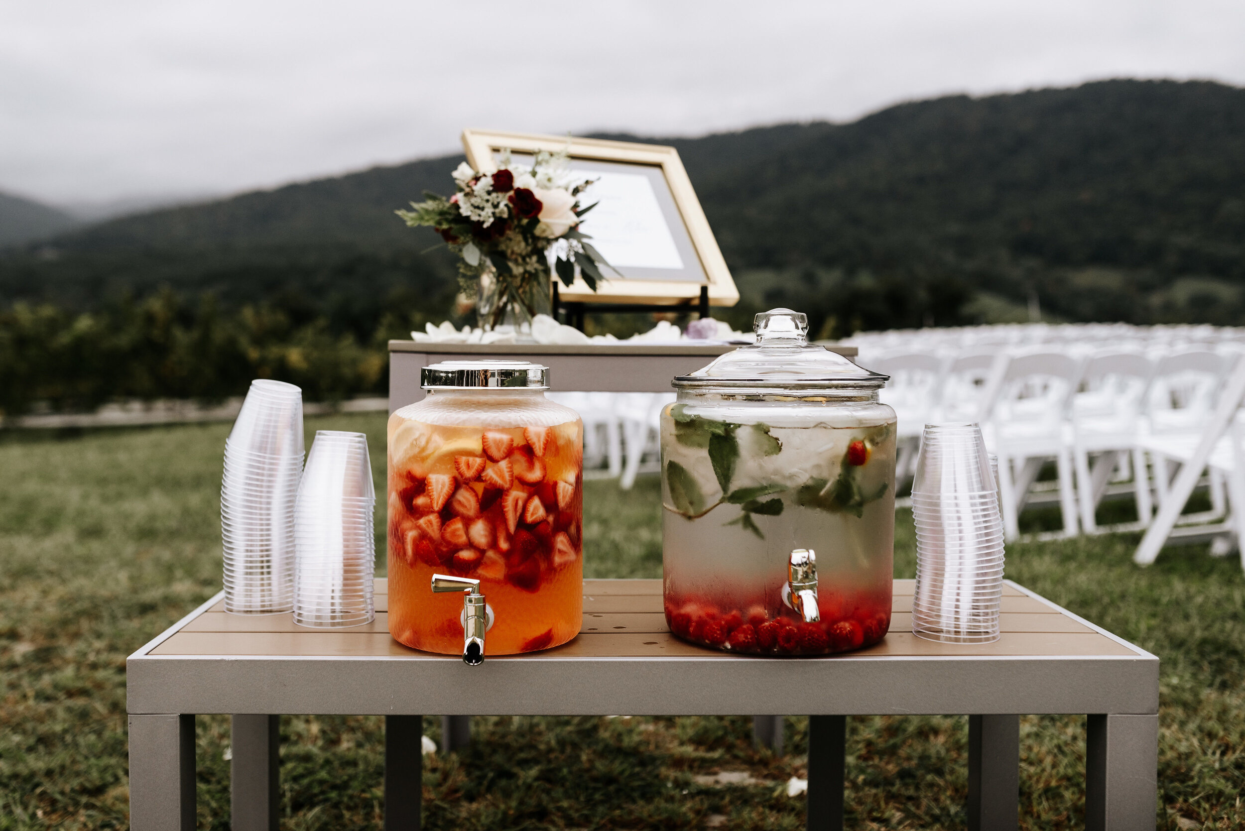 Allison_Nolan_Moss_Vineyards_Wedding_Charlottesville_Virginia_Photography_by_V_22.jpg