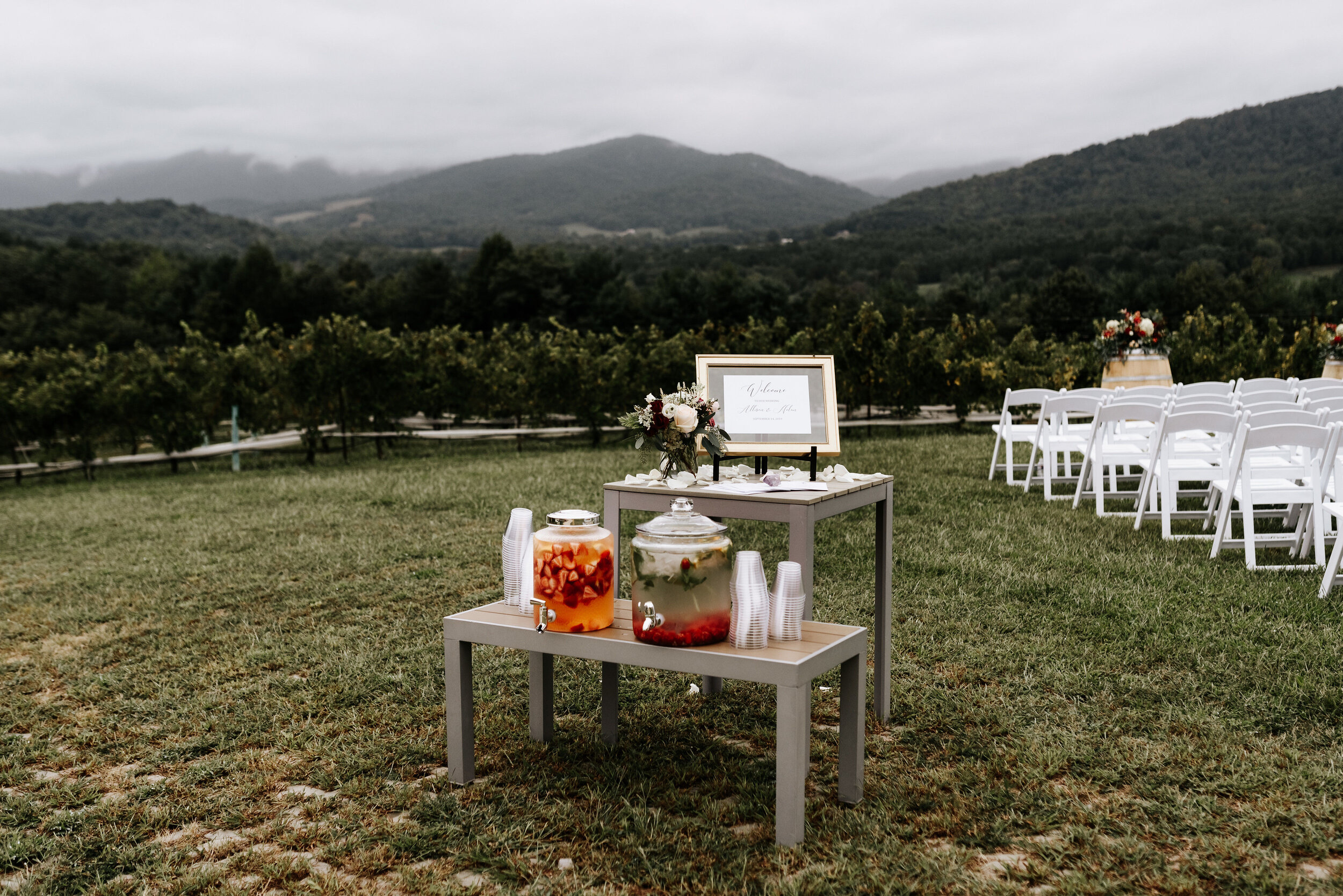 Allison_Nolan_Moss_Vineyards_Wedding_Charlottesville_Virginia_Photography_by_V_21.jpg