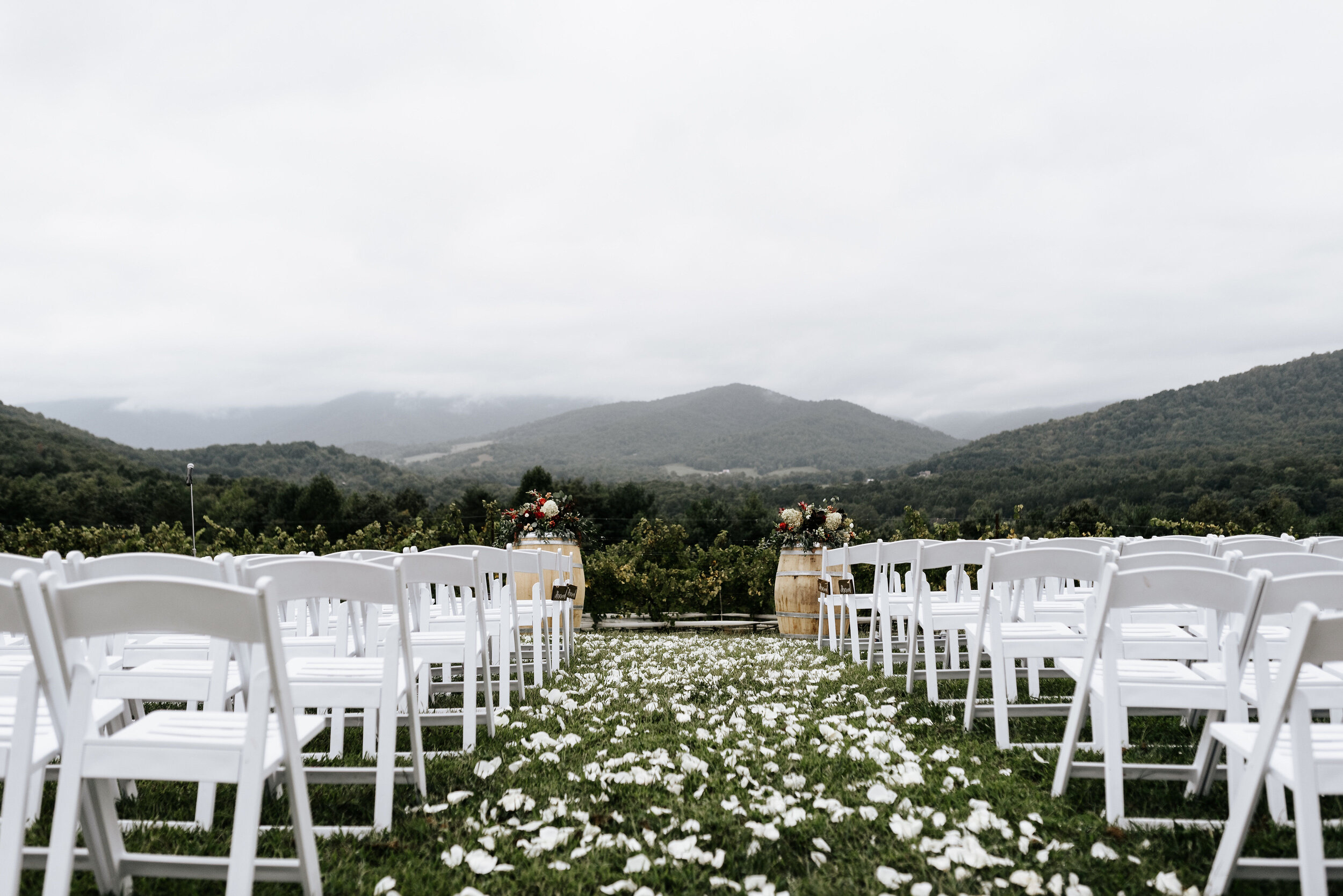 Allison_Nolan_Moss_Vineyards_Wedding_Charlottesville_Virginia_Photography_by_V_36.jpg