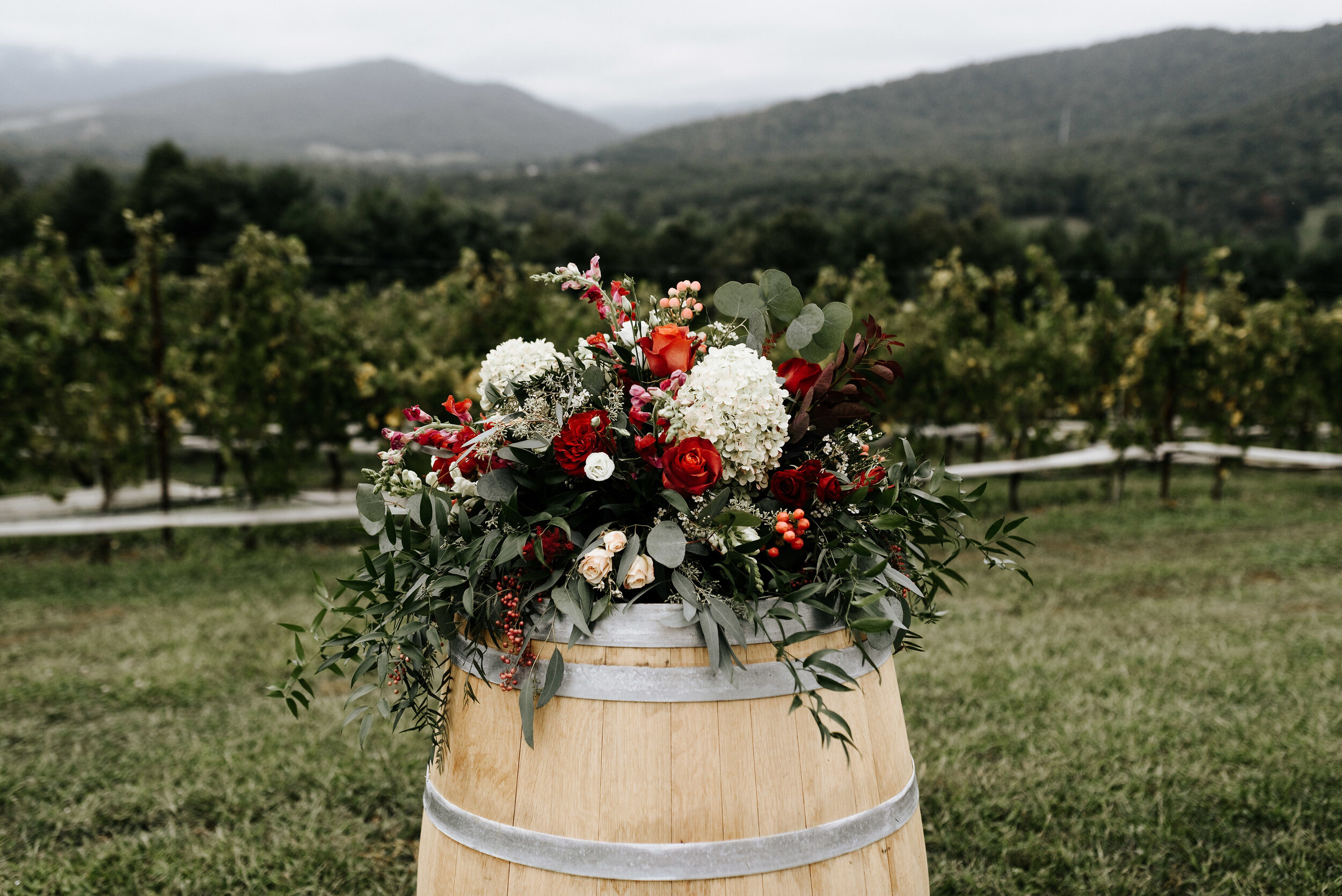 Allison_Nolan_Moss_Vineyards_Wedding_Charlottesville_Virginia_Photography_by_V_38.jpg